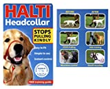 (HALTI) Head Collar & Link For Dogs Size 3 (Black)