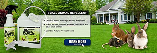 rodent-defense-small-animal-all-natural-deterrent-and-repellent-32oz-spray-for-squirrels-rabbits-rat