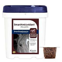 SmartAntioxidant Horse Supplement Pellets - 5lb Bag