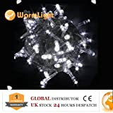 Festival LED String Fairy Lights White with Standard 2 Pin European Plug