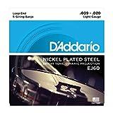【2セット】D'Addario/ダダリオ EJ60[10-20] ループエンド 5弦 バンジョー弦 ステンレススチール