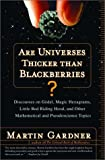 Are Universes Thicker Than Blackberries?: Discourses on Godel, Magic Hexagrams, Little Red Riding Hood and Other Mathematical and Pseudoscience Topics