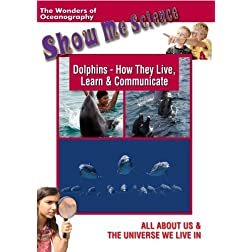 Dolphins - how they Live, Learn & Communicate