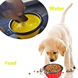 Comsun-2-pack-Collapsible-Dog-Bowl-Food-Grade-Silicone-BPA-Free-FDA-Approved-Foldable-Expandable-Cup-Dish-for-Pet-Cat-Food-Water-Feeding-Portable-Travel-Bowl-Blue-and-Green-Free-Carabiner-
