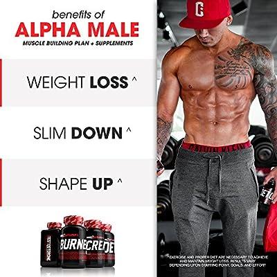 Alpha Male Stack - SHREDZ