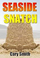 SEASIDE SNATCH (Lincolnshire Murder Mystery Book 2) (English Edition)
