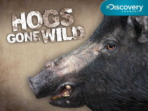 Hogs Gone Wild Season 1