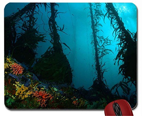underwater-ocean-photography-mouse-pad-computer-mousepad