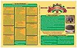 Chia Cheat Sheet Chart, by Angela Stokes