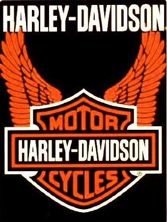 Harley Davidson Orange Wings Throw Blanket