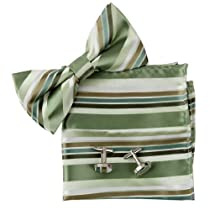 Green Stripes Silk Pre-tied Bow tie, Cufflinks, Hanky Present Box Set medium sea green groomsman gift Pointe BT2048 One Size Medium Sea Green