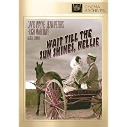 Wait 'till the Sun Shines, Nellie