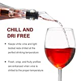 Wine Chiller: Erayco 3-in-1 Stainless Steel Wine Bottle Cooler Stick with Aerator and Pourer