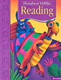 Rewards: Anthology Level 3.1 (Houghton Mifflin Reading)