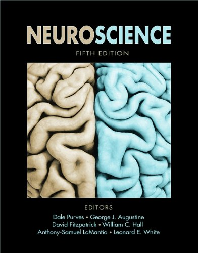 Neuroscience (Looseleaf) Fifth Edition
