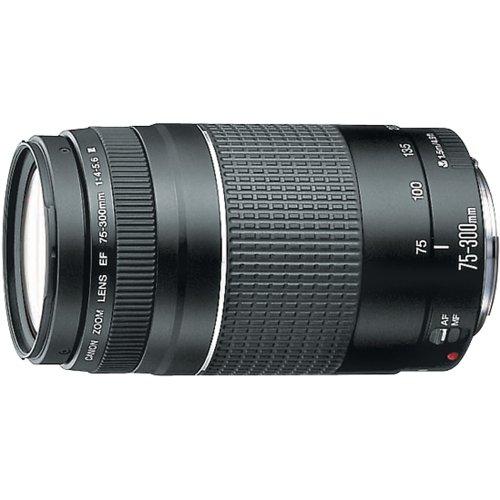 Amazon.com : Canon EF 75-300mm f/4-5.6 III Telephoto Zoom Lens for Canon SLR Cameras : Digital Slr Camera Lenses