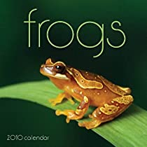 Frogs 2010 Wall Calendar