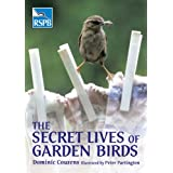 The Secret Lives of Garden Birdsby Dominic Couzens