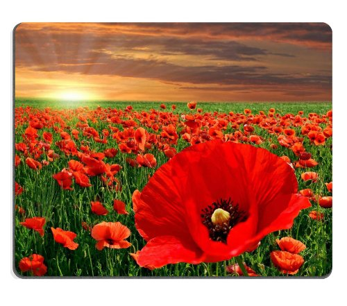 Poppy Flower Field red flowers endless sunset clouds sunray Mouse Pads Customized Made to Order Support Ready 9 7/8 Inch (250mm) X 7 7/8 Inch (200mm) X 1/16 Inch (2mm) High Quality Eco Friendly Cloth with Neoprene Rubber Liil Mouse Pad Desktop Mousepad Laptop Mousepads Comfortable Computer Mouse Mat Cute Gaming Mouse_pad