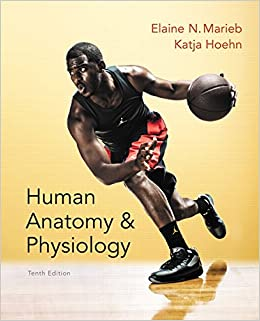 human anatomy and physiology laboratory manual elaine n marieb