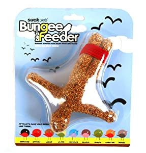 Bungee Bird Seed Feeder