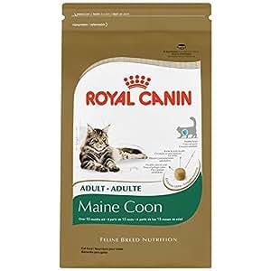 buy royal canin maine coon dry cat food 6 pound bag. Black Bedroom Furniture Sets. Home Design Ideas
