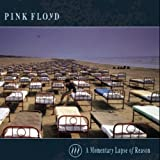 A Momentary Lapse of Reason ~ Pink Floyd