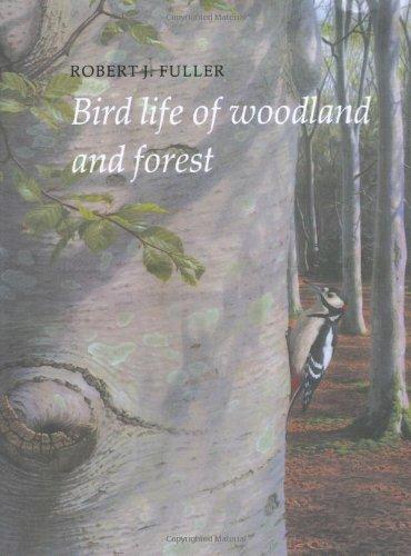 Vida de las aves de bosque y bosque (serie vida del pájaro)