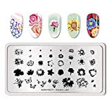 Summer Fruit Nail Art Stamping Template Tropical Punch Pattern Rectangle Image Plate Stamping Polish Needed BP-O-L001 (Color: BP-O-L001)