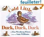 Cold Little Duck, Duck, Duck Board Book