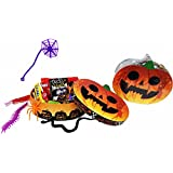 Tricks and Treats ~ Fun Pumpkin Shaped Halloween Gift Boxes ~ Filled with Fun Favors and Assorted Treats (4 oz)