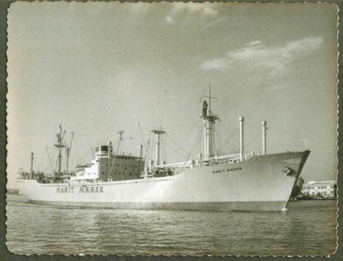 passenger-freighter-s-s-marit-maersk-photo-1950s