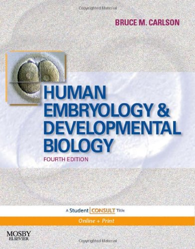 Developmental Stages Of Humans