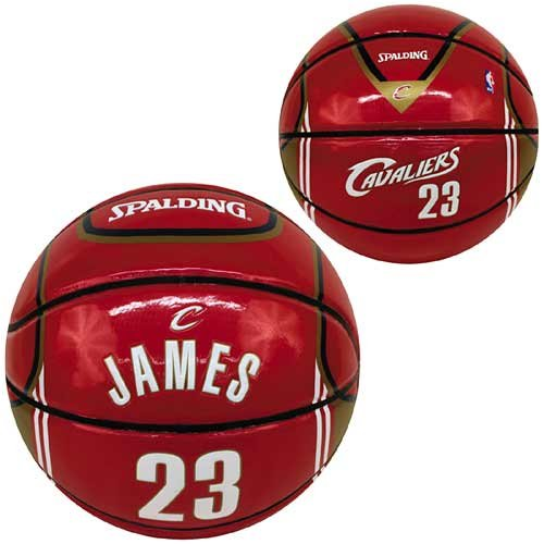 lebron james basketballs