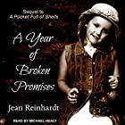 A Year of Broken Promises: An Irish Family Saga, Book 2 Hörbuch von Jean Reinhardt Gesprochen von: Michael Healy