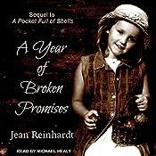 A Year of Broken Promises: An Irish Family Saga, Book 2 | Jean Reinhardt