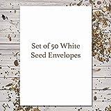 "50 Blank Seed Envelopes 3.25"" x 4.50"" (Self Sealing) ""White"""