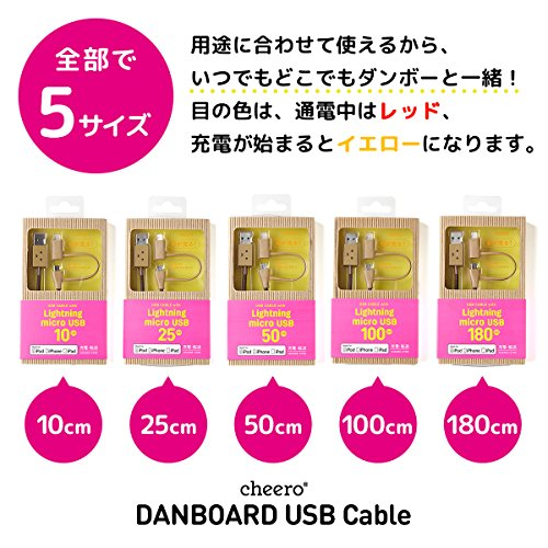DANBOARD USB Cable with Lightning & Micro USB connector (50cm)/MFi 認証取得済み
