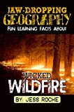 Jaw-Dropping Geography: Fun Learning Facts About Wicked Wildfires: Illustrated Fun Learning For Kids