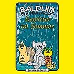 Gewitter im Sommer (Balduin der Regenwurm 4) | Sabine Fischer,Tim Thomas