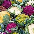 Rainbow Cauliflower Seeds - Tasty and Unusual