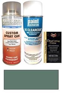 automotive paint body trim paints primers touchup paint. Black Bedroom Furniture Sets. Home Design Ideas