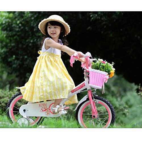 Royalbaby Jenny Princess Pink Girl's Bike with Training Wheels and Basket, Perfect Gift for Kids, 18 inch wheels 4