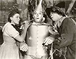 Judy Garland The Wizard of Oz Photo Hollywood Movie Photos 8x10