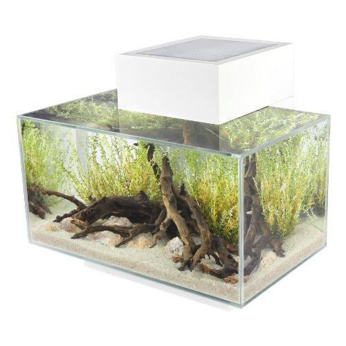 Fluval edge 6 gallon aquarium with 21 led light white - Petit aquarium design ...