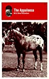 The Appaloosa (0879801824) by Richardson, Bill
