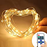 NexScene Starry Durable DC Silver Coating 10M 33FT Copper Wire Flexible Lights 100 LED For Wedding Christmas Party Holiday with 12V Power Adapter Wireless Remote Control Mini Dimmer (Warm White)