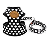 Haustier-Leine/Geschirr-Set für Kleinen Hund oder Katze, gepunktete Weste, atmungsaktiver weicher Netzstoff langlebig