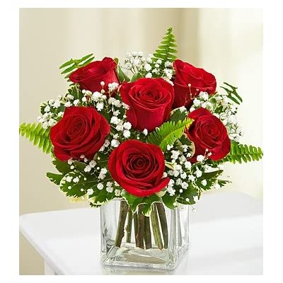 Red Roses : Fresh Cut Format Rose Flowers : Grocery & Gourmet Food