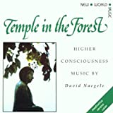 Temple In The Forestby David Naegele